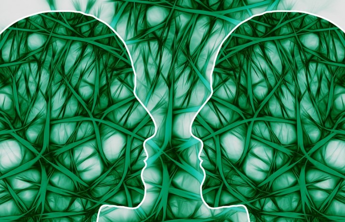 neural-pathways-221719_960_720-700x450